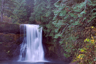 Photo: Silver Falls State Park - Upper North Falls