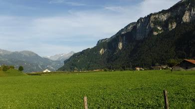 Photo: Aare-delta