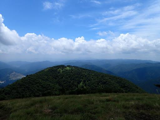 近くに権現山