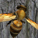 Bee Nest Simulator 3D - Insect and 3d animal game icon