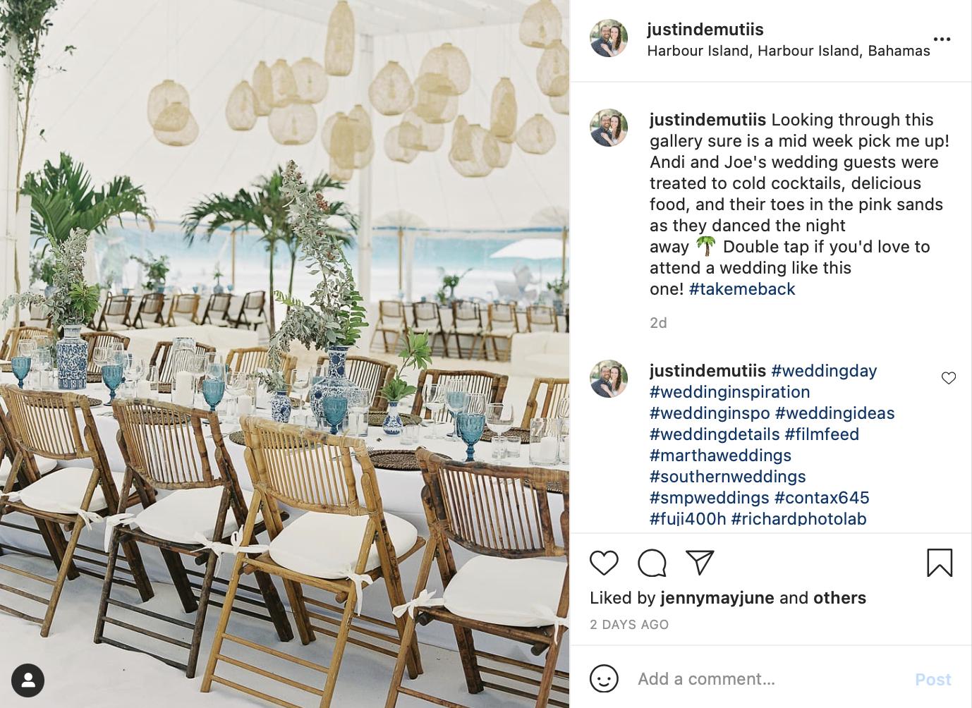 destination wedding palm tree decor