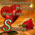 Happy Sunday: Greetings, GIF Wishes, Text Quotes icon