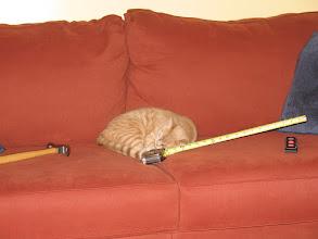 Photo: Handyman sleeping on the job.