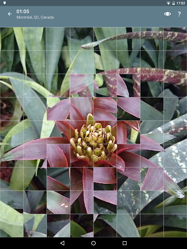 Jigsaw Puzzle: Flowers screenshot 13
