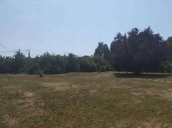 terrain à Pacy-sur-Eure (27)