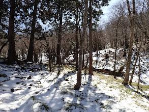 セキオノコバ辺りは残雪多く