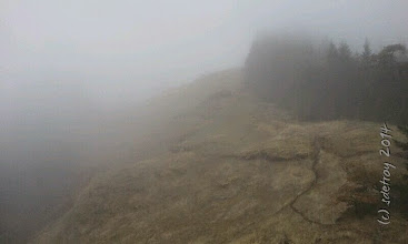 Photo: Grateful for the fog..
