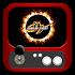Arcade 99 (emulator)