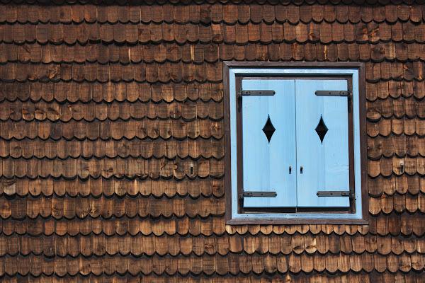 Blue window di Simona Rizzi