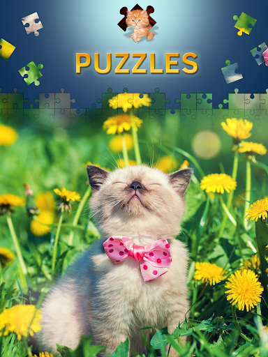 Cats Jigsaw Puzzles Free Apk Download 8