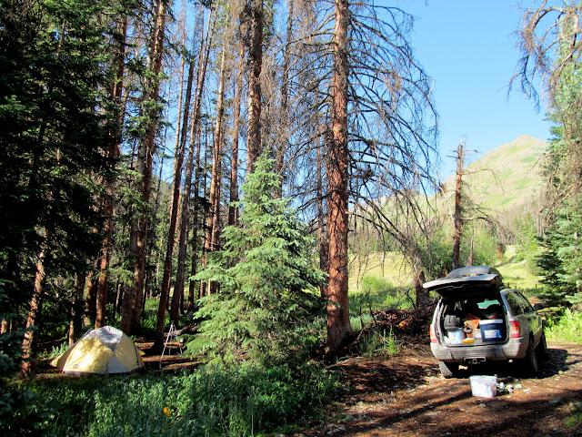 Camp on Saturday morning