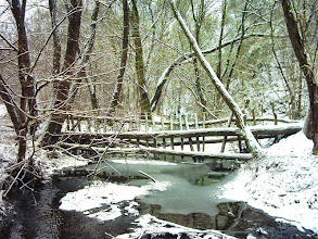 Photo: Driftwood-rake on a creek near to the Lázbérc Reservoir, Uppony, Hungary (2009)