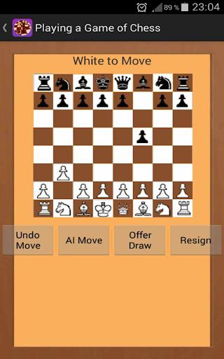Chess Game King