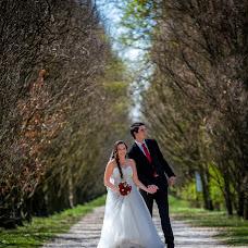 Wedding photographer Nenad Becarevic (NenadBecarevic). Photo of 16.04.2017