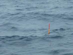"Photo: 今日は、""ウキ流し釣り""です。潮は、めちゃくちゃ速い「バカ潮」です。・・・困った。"
