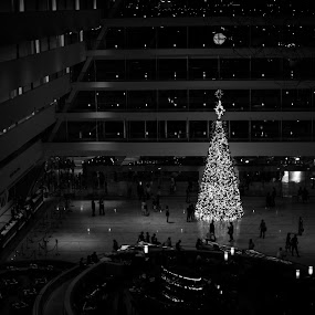 Christmas Tree by Han Yi Li - Novices Only Objects & Still Life ( tree, black and white, christmas, marina bay sands, hotel, singapore )