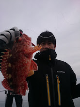 Photo: 根魚は高活性!