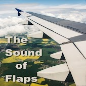 The Sound of Flaps