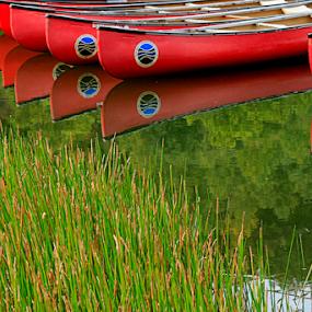 Canoe Reflection by Gwen Paton - Transportation Boats ( red, canoe, virgiinia, water,  )