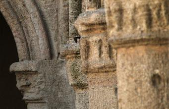 Photo: Sandstein Säulen