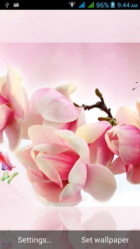 玩娛樂App|1031花のライブ壁紙免費|APP試玩