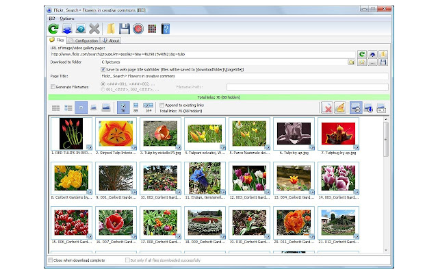 Image result for Bulk Image Downloader
