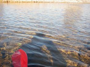 Photo: czysta woda