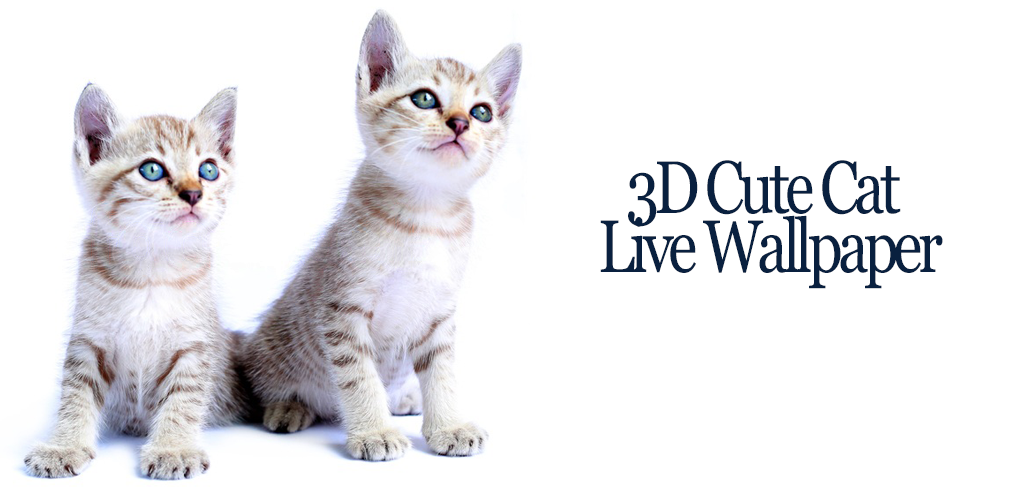 Download 3d Cute Cat Live Wallpaper By Netly Inc Apk Latest