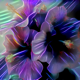 4 Hibiscus flowers neon by Cassy 67 - Digital Art Abstract