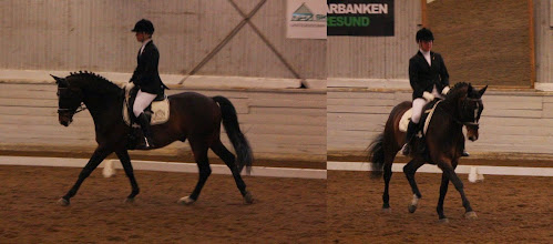 Photo: Sanna och Manchini i finalen