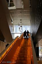 Photo: Interior - Main stairs.