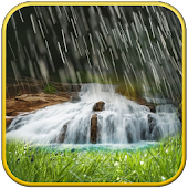 Rain  waterfall live wallpaper