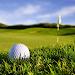 Track My Golf Icon