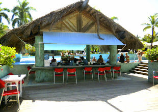 Photo: The swim-up bar from the land side.