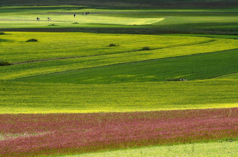 Una tavolozza di colori di Fiore Doncovio