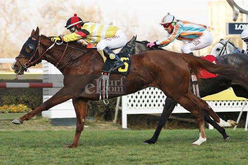 Doña Cocketa (Don Cavallo) gana el Clásico Asociación De Propietarios F.S. De Carreras (1300m-Pasto-CHS).