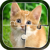 Learn Animals - Puzzle Game