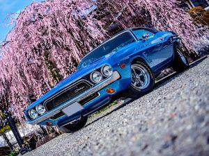 チャレンジャー  1973 Rallyのカスタム事例画像 TamaOnlineさんの2020年04月04日15:32の投稿