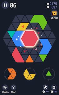 Make Hexa Puzzle 2