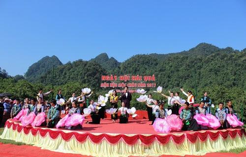 Du lịch Mộc Châu, ngày hội hái quả 2