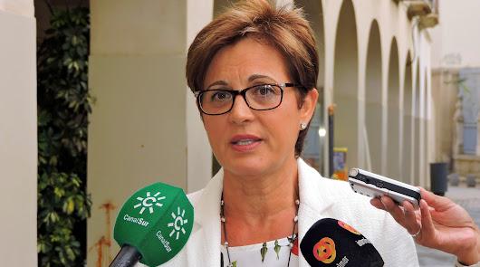 IU y PSOE salen en defensa de los árboles de la Plaza Vieja