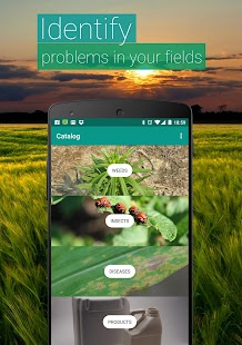 Agrobase - weed, disease, insect Screenshot