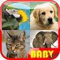 Baby Animal Kids Education icon