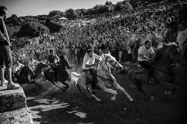 """Il mio """"Cavallo di battaglia"""" di FrancescoPaolo"""