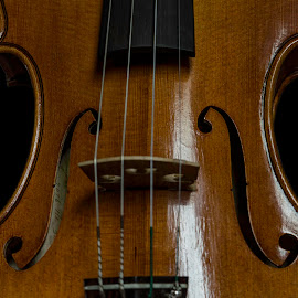 A Still Alive Daydream by Andrius La Rotta Esquivel - Artistic Objects Musical Instruments ( amazing, music, ancient, musical instrument, violin, artistic, artistic objects, photography )
