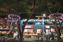 Places to shop in Orchard Road
