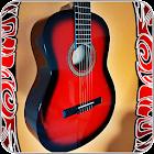 Lerne die spanische Gitarre zu spielen icon