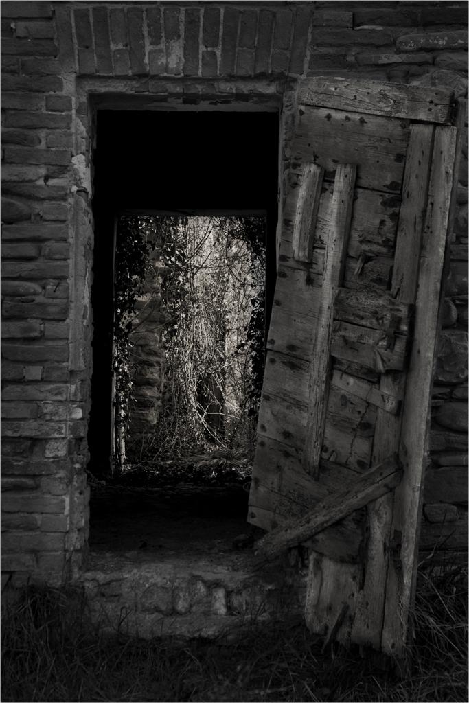 Verso Narnia di Blank