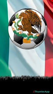 Soccer Mexican League 1