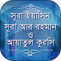 Surah Yasin Surah Ar-Rahman Ayatul kursi in bangla icon